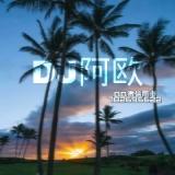DJ阿欧Remix