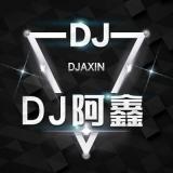 蓝波 - 你到底有没有爱过我(松滋DJ阿鑫 ProgHouse Mix)